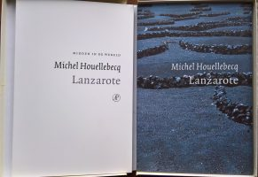 MICHEL HOUELLEBECQ LANZAROTE PDF